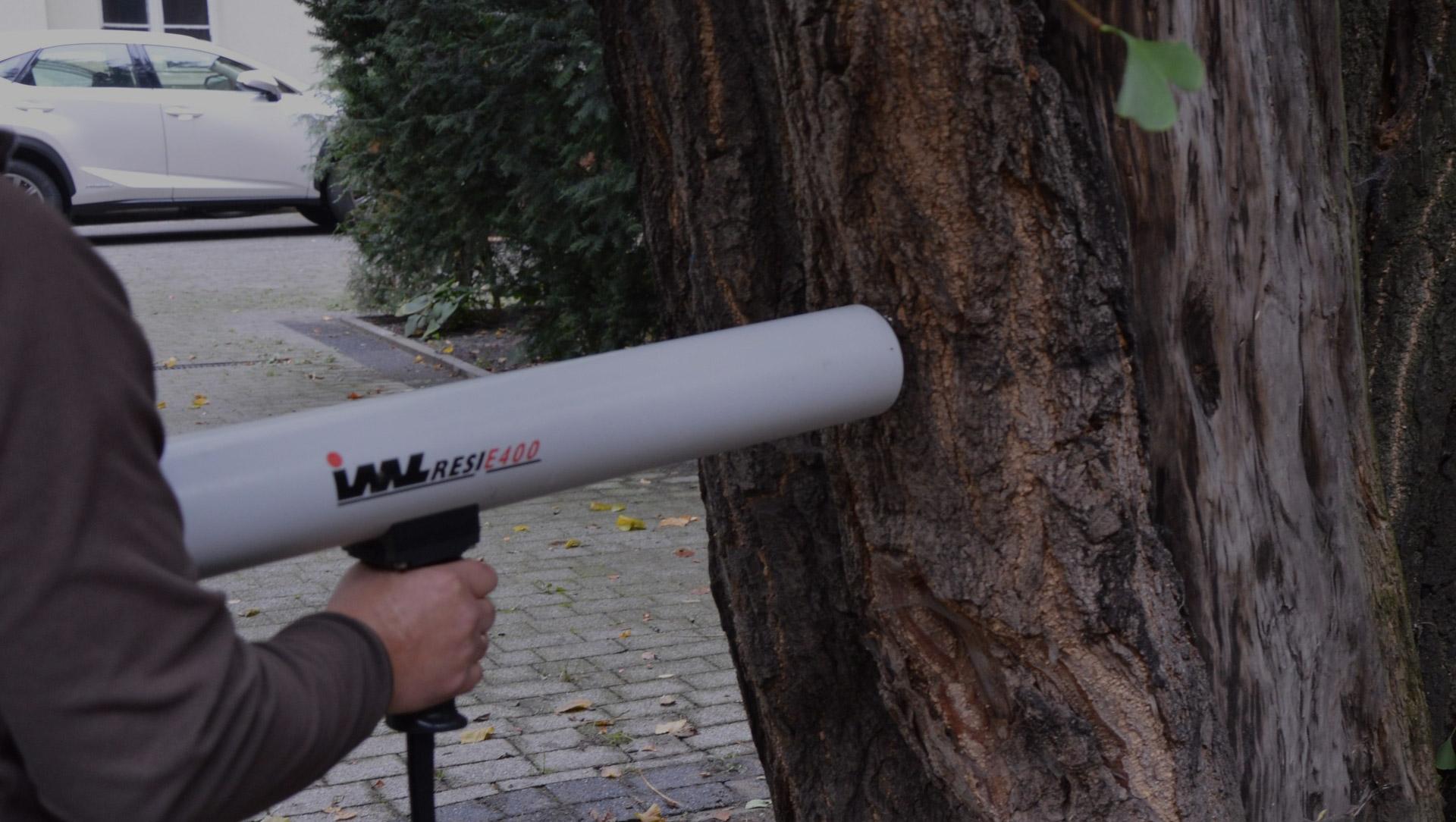 badania dendrologiczne - badanie drzewa rezystografem for eco