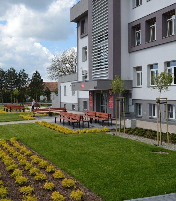 nowe otoczenie szkoły - projekt zieleni